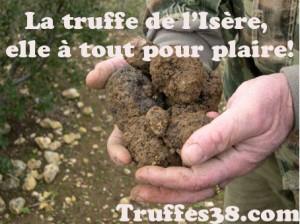 truffes-logo