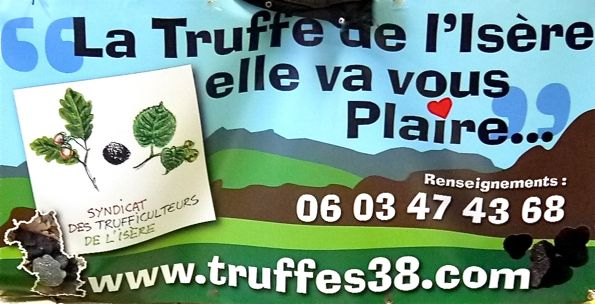 Band truffes
